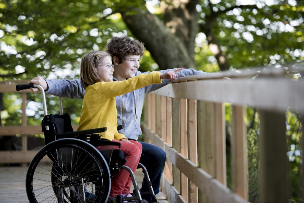 Brother looking at a view that his younger sister in a wheelchair is pointing at.